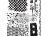 Nature & scripts (Transfert Adhesif)
