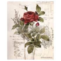 transfert pour meuble Botanical rose