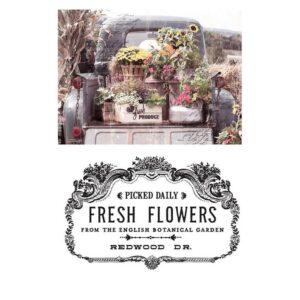 transfert pelliculable Fresh Flowers