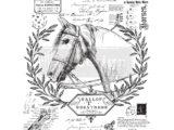 Fine Horsemen  61 x 84cm