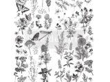 Spring Meadow Life  56 x 76cm (fin de serie)