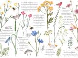 Herbs & Spices 88x57cm