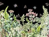 Marvellous Garden 89x57cm