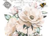 Fleur Frisée 28x38cm
