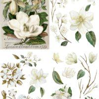 Magnolia Garden Dixie Belle