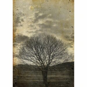 Sepia Tree MINT by Michelle